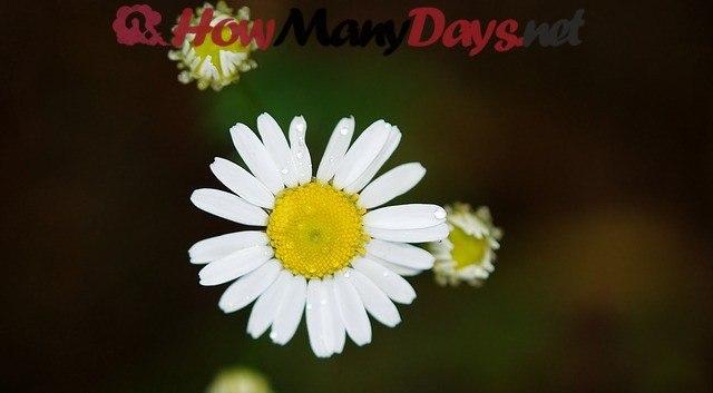 how many days in summer season