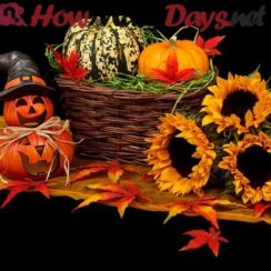 How Many Days Until Next Halloween 2020 Untildays.» How many days until?